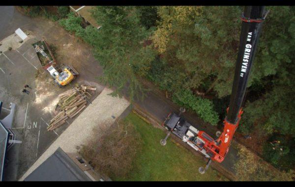 Filmpje veilig bomen zagen
